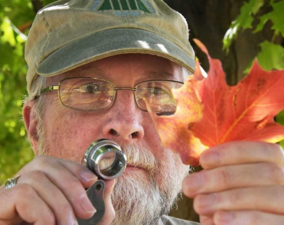 Researcher Spotlight: George Robinson, PhD