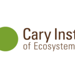 Catskill Research Fellowships